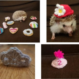 African Pygmy Hedgehog Products